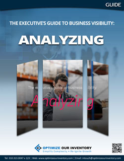 The executive's guide to business visibility: Analyzing